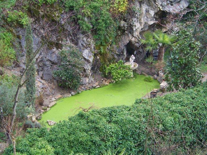Visites guid es eden parc le jardin d 39 eden tournon sur for Jardin d eden meyzieu